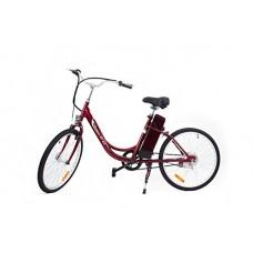 Northern Trail 24 inch 250W Single Speed Electric Bike Step Through Style CN-EBLAF24 - B075XDT21V